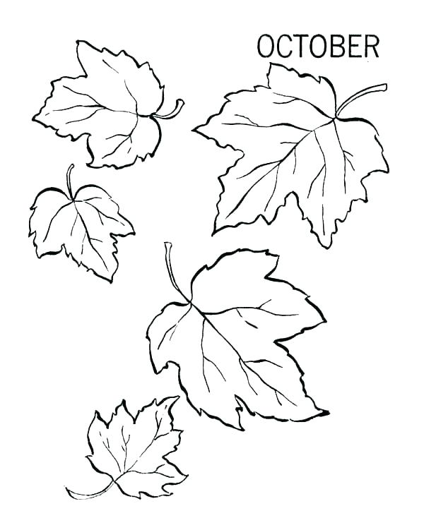 600x734 Fall Autumn Coloring Pages Leaves Coloring Pages Printable Fall