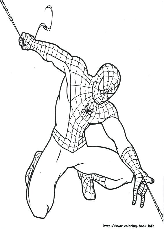 567x794 Spiderman Color Page Drawings To Color Coloring Pages On Coloring