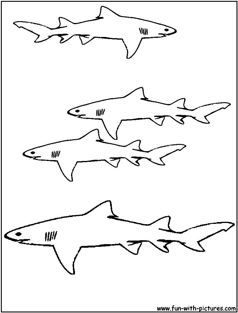Lemon Shark Coloring Page at GetDrawings   Free download