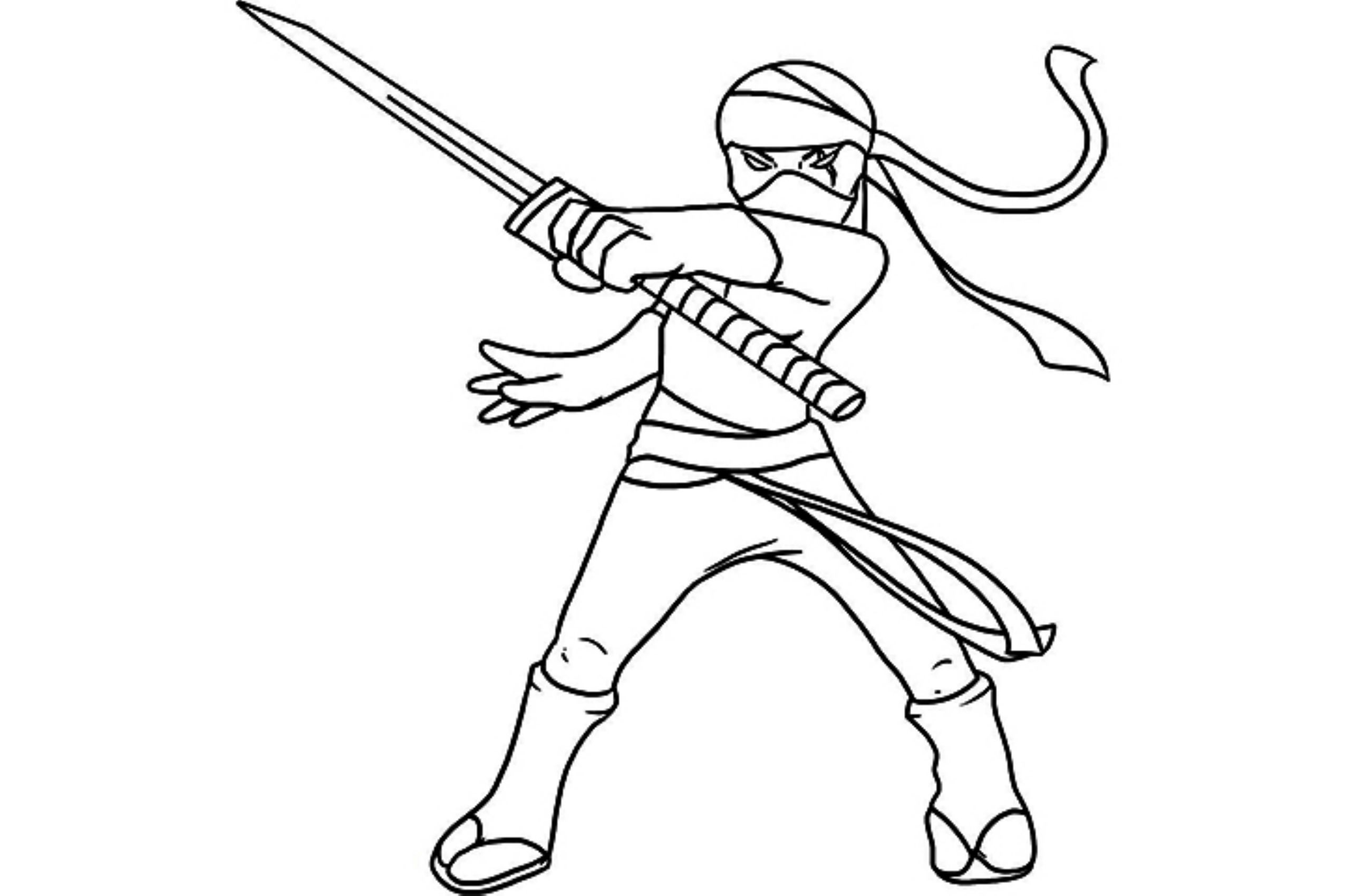 2551x1700 Teenage Mutant Ninja Turtles Coloring Pages Leonardo Printable
