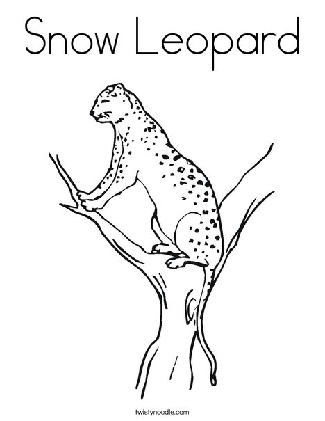 468x605 Snow Leopard Coloring Page