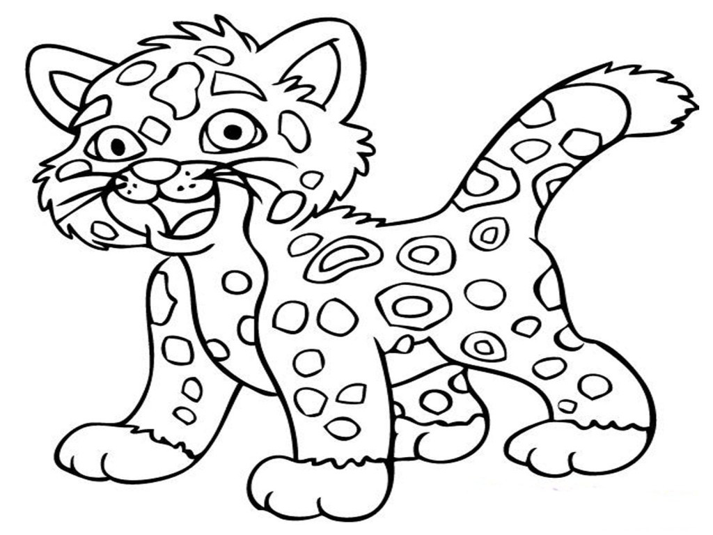 1024x768 Snow Leopards Coloring Page Baby Leopard Pages