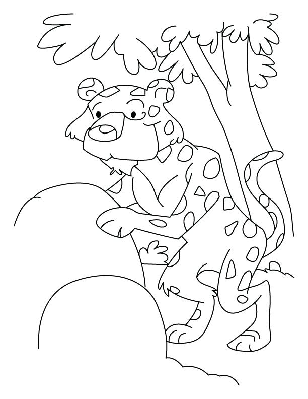 612x792 Coloring Enchanting Leopard Gecko Coloring Pages Leopard Gecko Pin