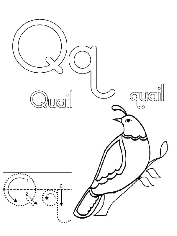 600x799 Letters Coloring Page Printable Letter Q Coloring Pages Q Coloring