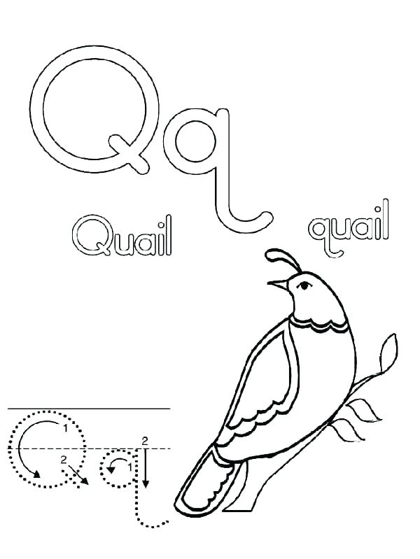 600x799 Good Letter I Coloring Pages For Preschool Or Letter D Coloring Es