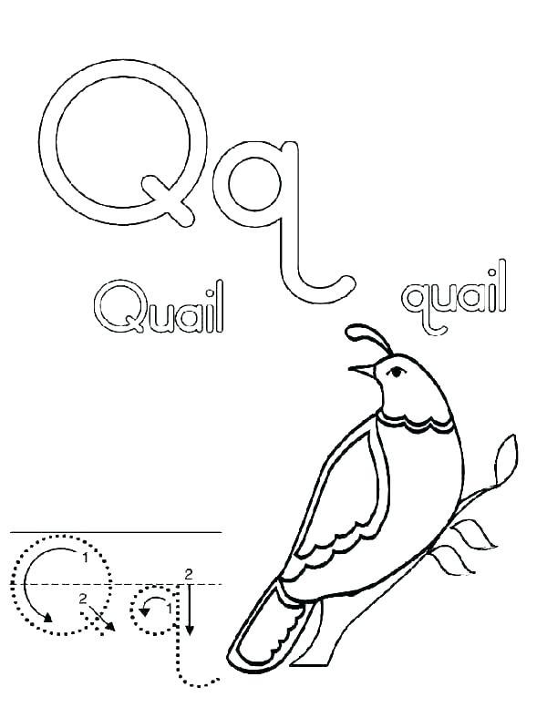 600x799 Letter G Coloring Pages Preschool Deepart