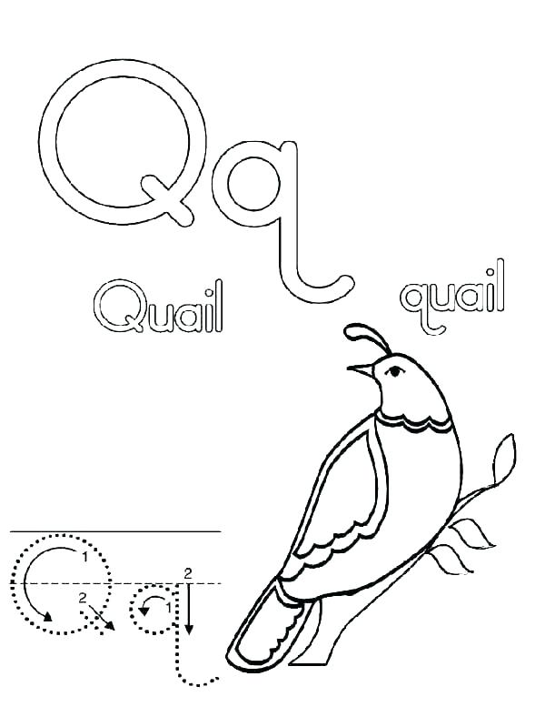 600x799 Flower Island Alphabet Letter F Coloring Pages Flower Island