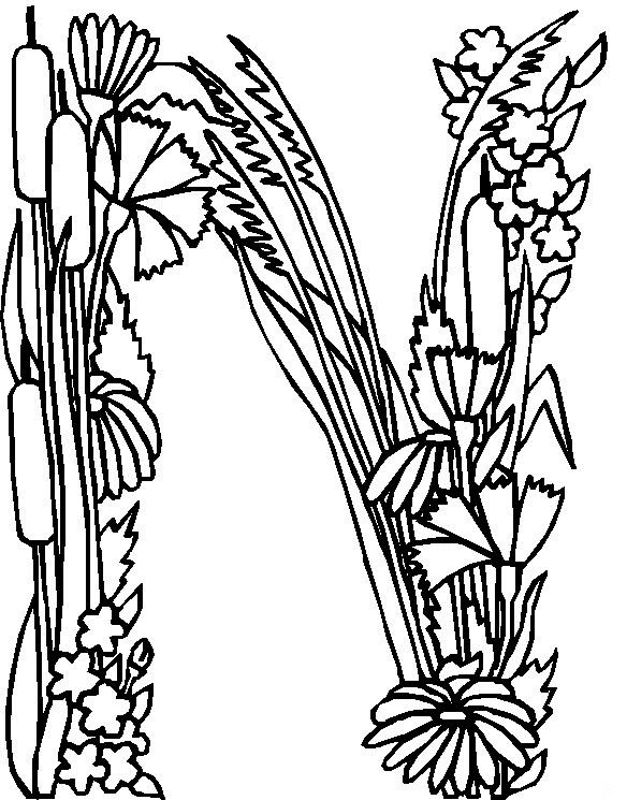 627x800 Flower Page Printable Coloring Sheets Alphabet Flower N Coloring