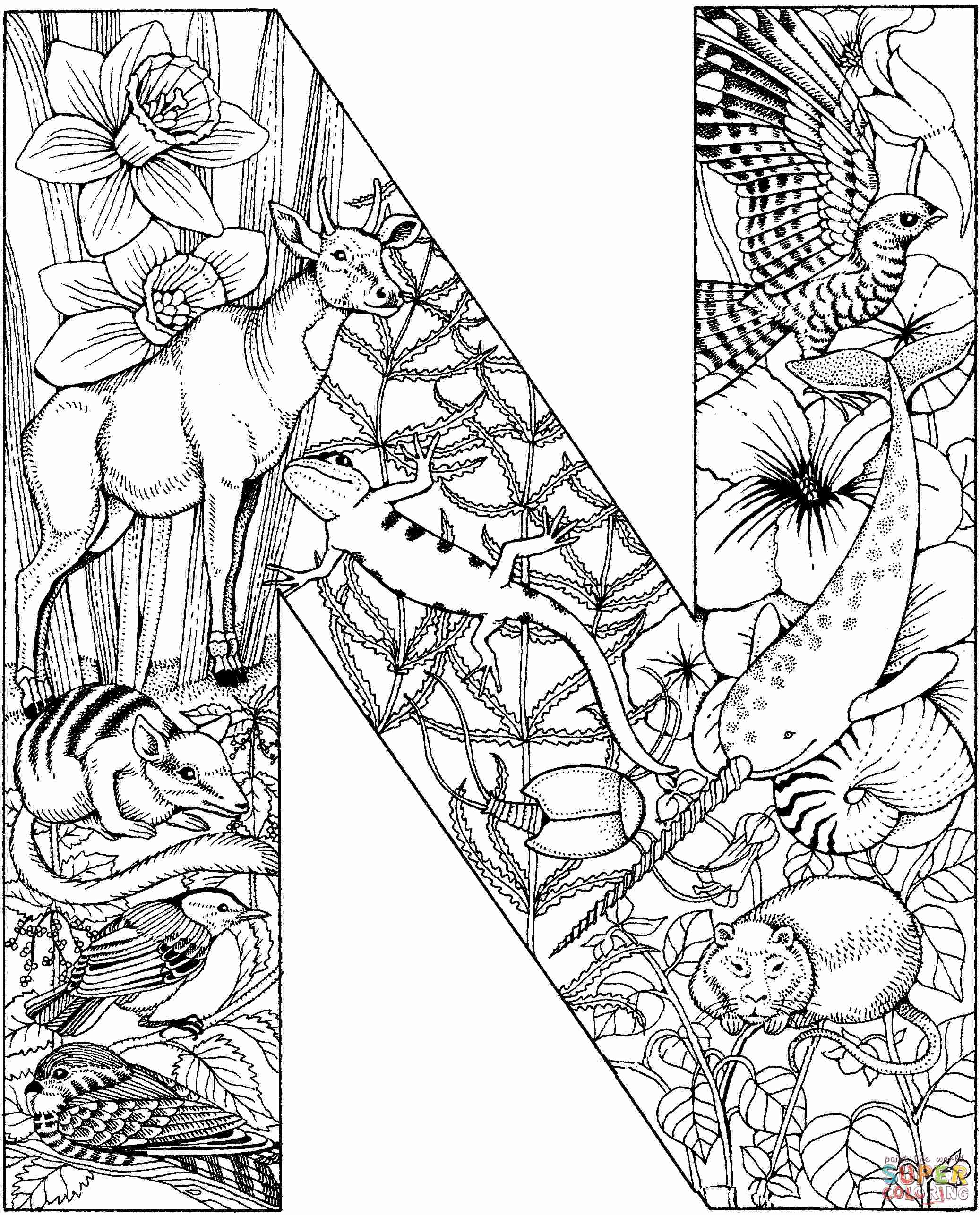 2074x2573 Letter N Coloring Pages Preschool Printable For Kids Point Stuning