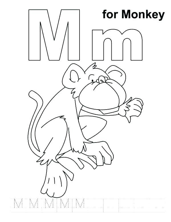 600x776 Letter E Coloring Pages Preschool Letter P Coloring Pages Penguin
