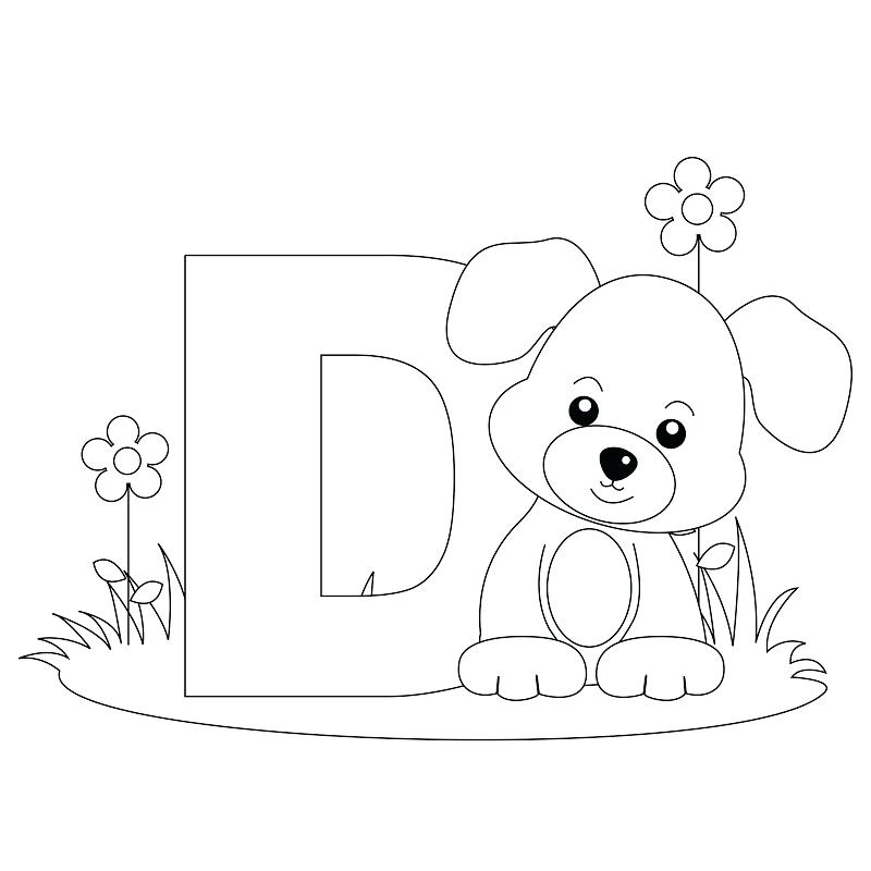 800x800 Letter P Coloring Pages Preschool D Image For V