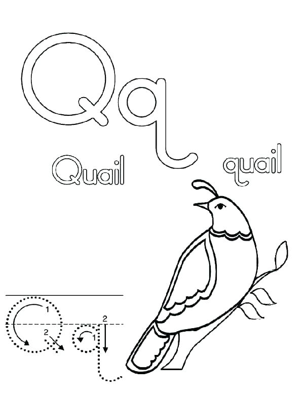 Letter V Coloring Pages Preschool at GetDrawings.com | Free for ...