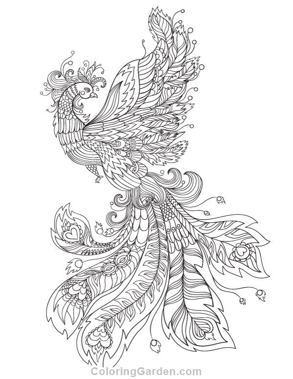 600x776 Free Adult Coloring Pages Page