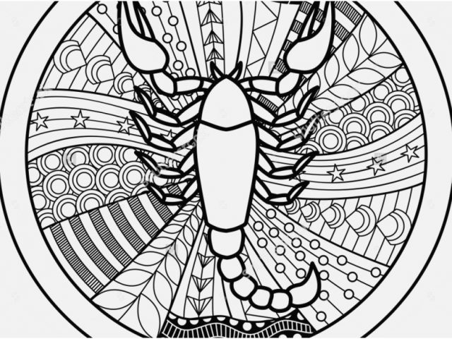 640x480 Astrology Coloring Pages Concept Zodiac Sign Scorpio Zentangle