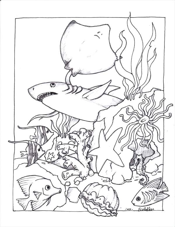 600x778 Marine Life Coloring Pages Free Sea Coloring Page Marine Life