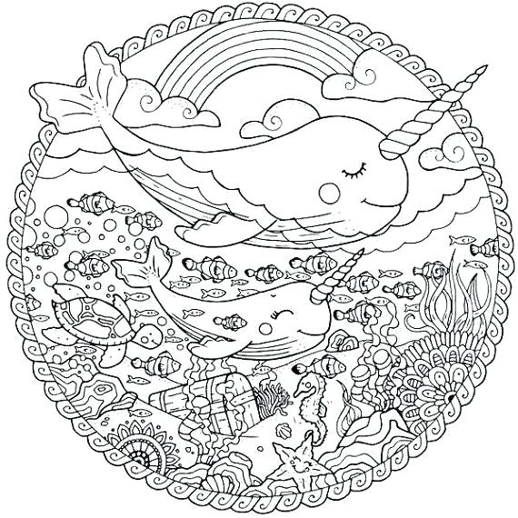570x570 Narwhal Coloring Pages Narwhal Adult Coloring Pages Sea Life