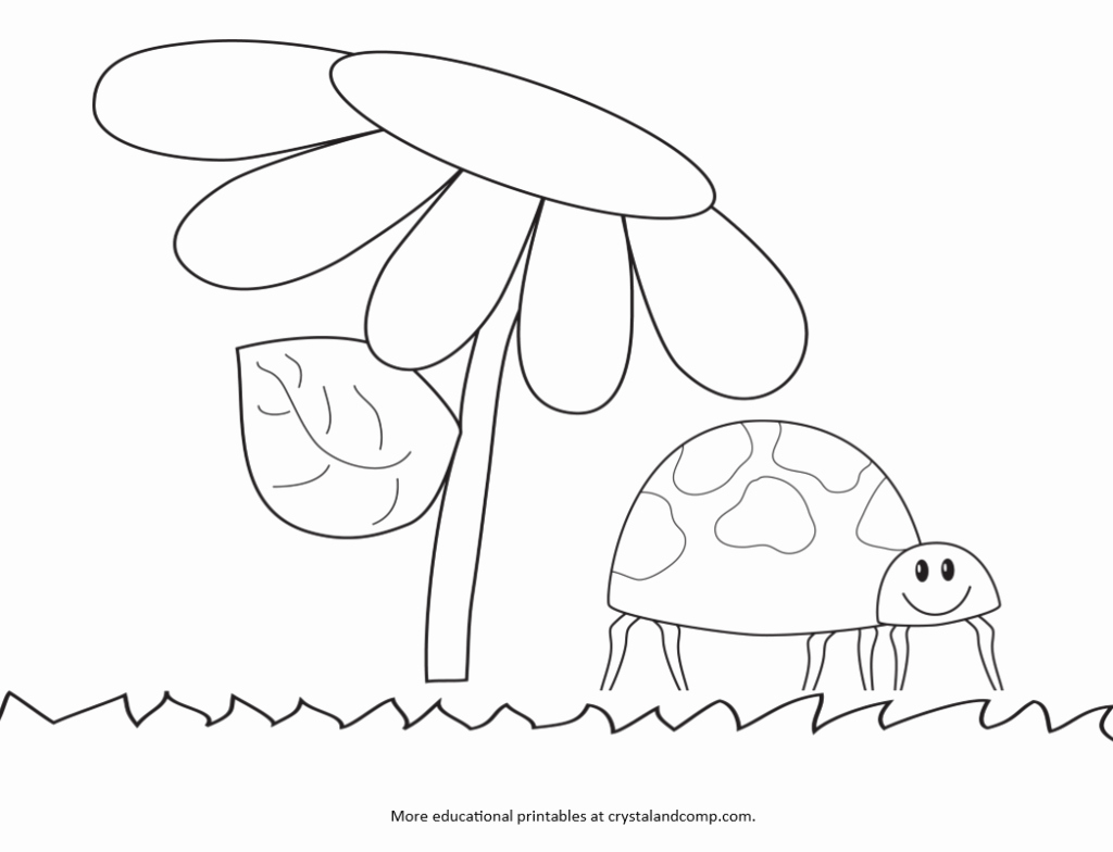 1024x784 Coloring Pages Of Ladybug Gallery Kid Color Pages Ladybug Life