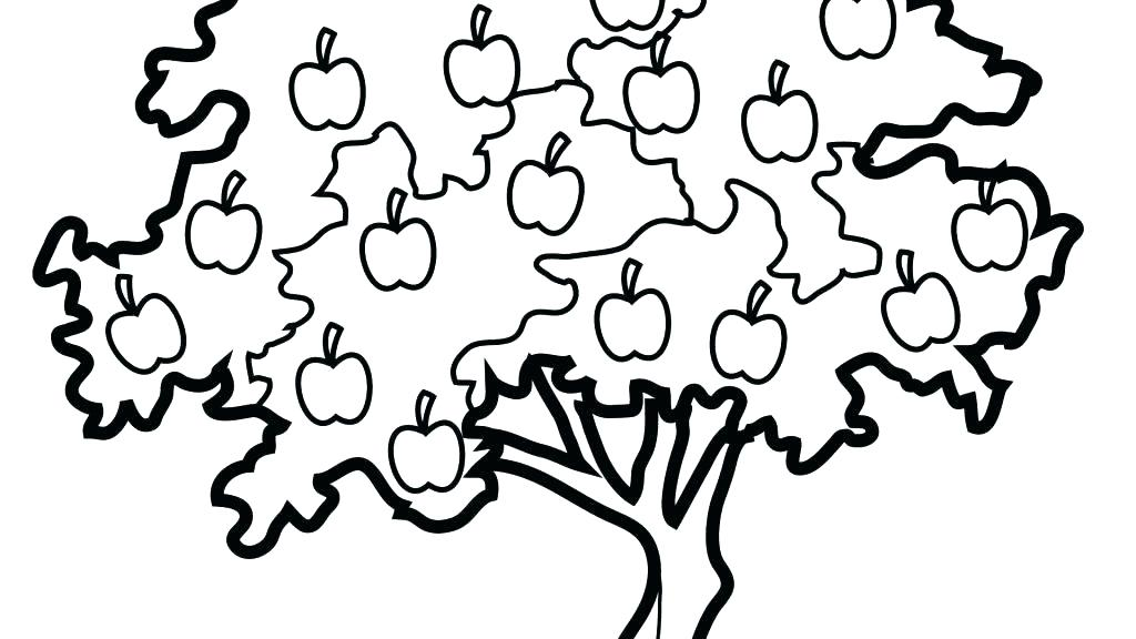 1024x576 Apple Tree Coloring Page Apple Coloring Page Apple Tree Coloring