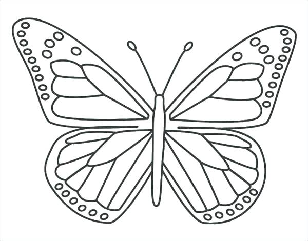 600x470 Butterfly Life Cycle Coloring Page Pdf