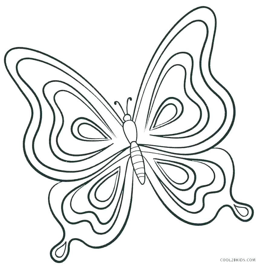 863x878 Butterfly Color Page With Butterfly Color Page Butterfly Coloring