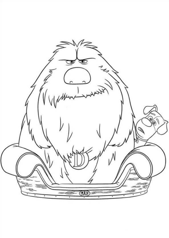 593x832 Coloring Pages Of Secret Life Of Pets Kids N