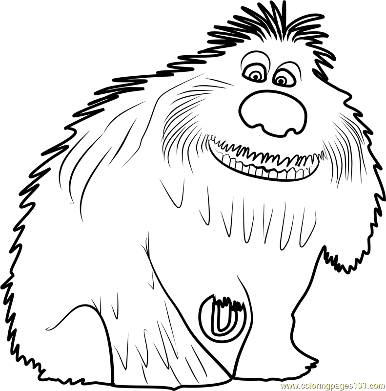 791x800 The Secret Life Of Pets Coloring Pages