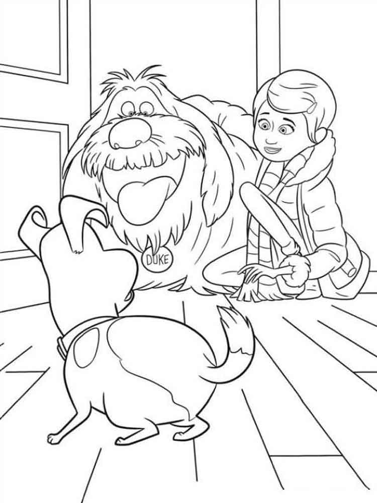 750x1000 The Secret Life Of Pets Coloring Pages Free Printable The Secret