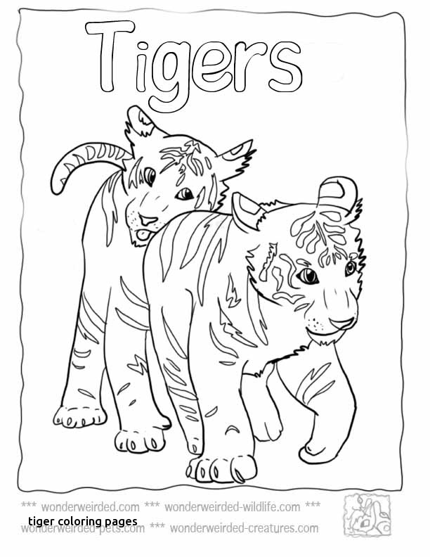 612x792 Tiger Coloring Pages