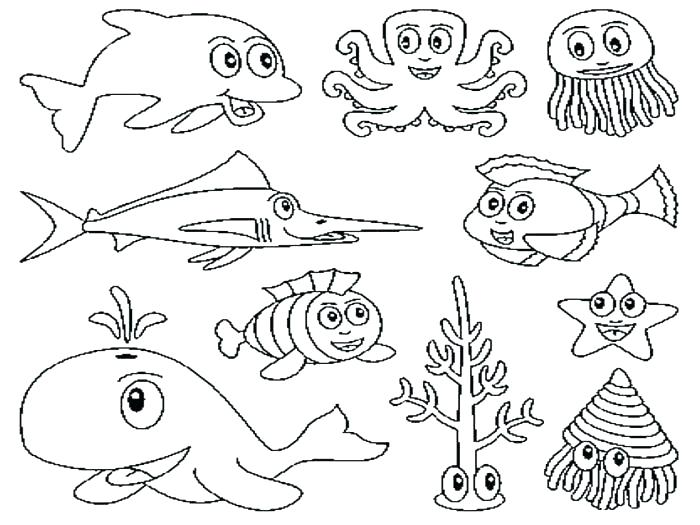 700x525 Ocean Creatures Coloring Pages Marine Life Sea Colouring Preschool