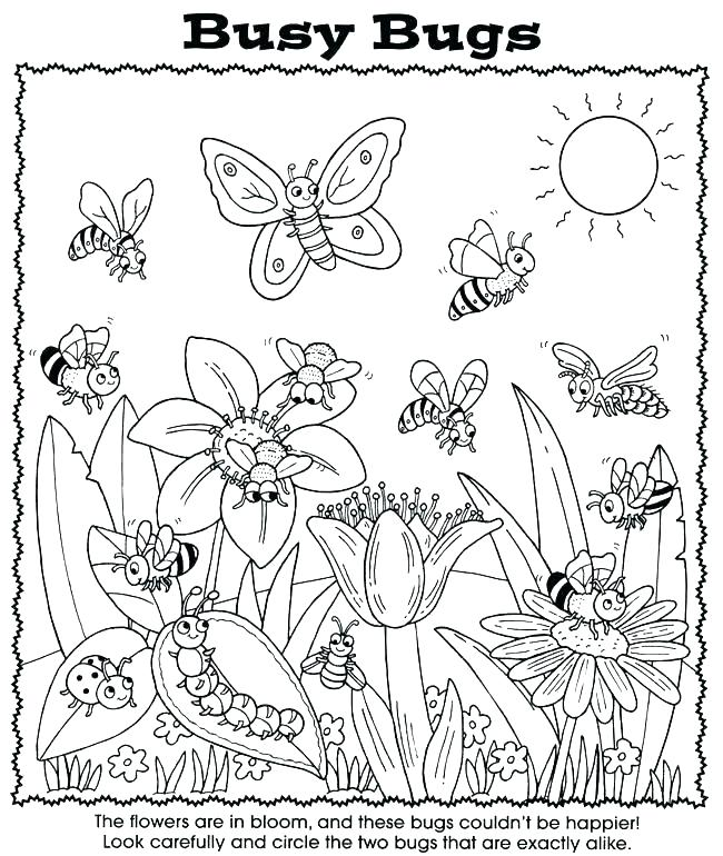 650x770 Bug Coloring Page Lady Bug Coloring Page Louie The Lightning Bug