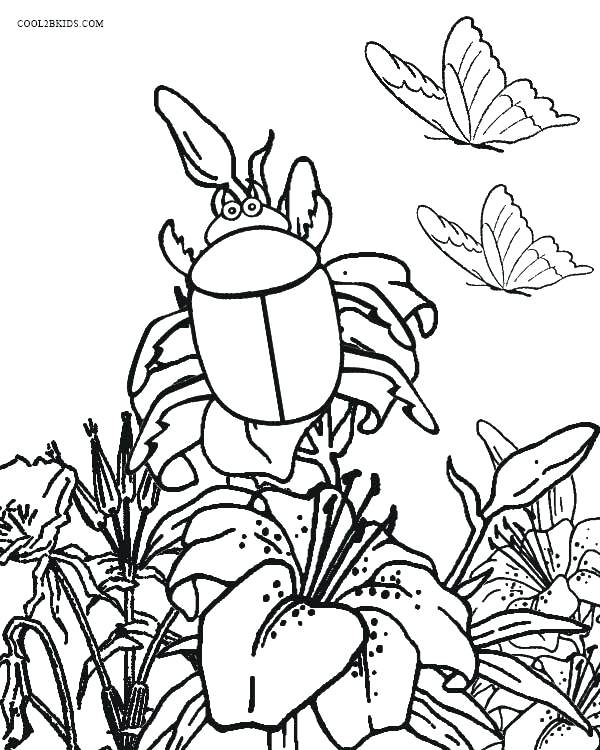 600x750 Bugs Coloring Page Bug Coloring Page Bugs Coloring Pages For Kids