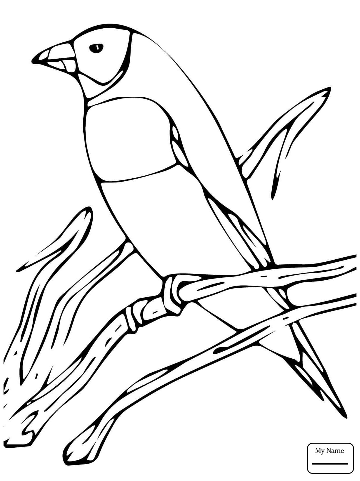 1224x1632 Purple Finch Coloring Page