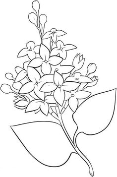 236x357 Flower Page Printable Coloring Sheets Spring Flower
