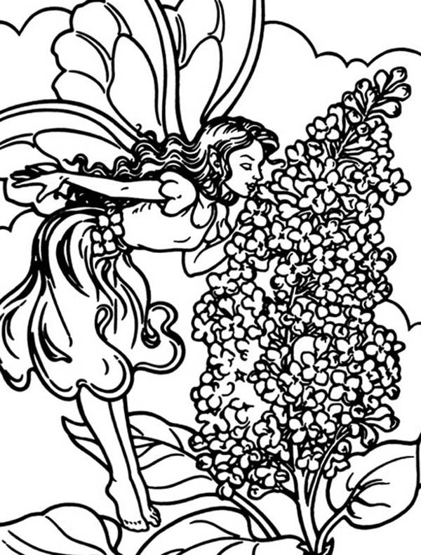 600x790 A Little Fairy Smelling Lilac Flower Coloring Page Coloring