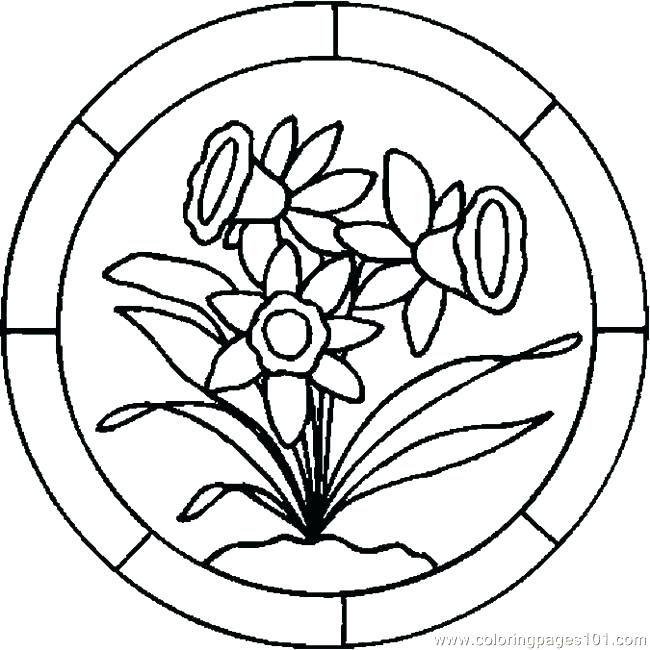 650x650 Lily Flower Coloring Pages Download And Print Lily Flower Lily