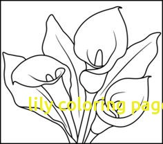 236x208 Lily Coloring Pages Free Archives
