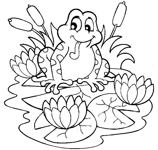 600x569 Frog On Lily Pad Coloring Page Frog Sitting On Lilypads And Lotus