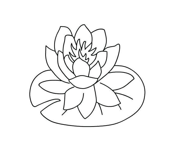 700x600 Calla Lily Coloring Pages Calla Lilly Applique Printable Coloring