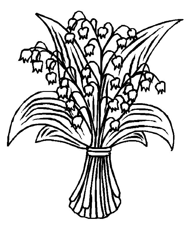 652x783 Lily Of The Valley Coloring Page