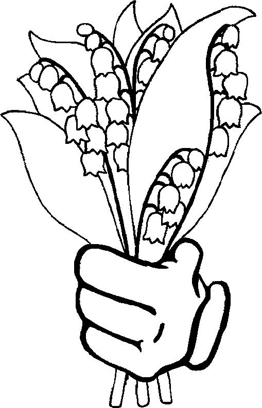 509x794 Lily Of The Valley Coloring Page