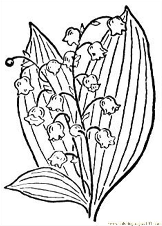 Lily Of The Valley Coloring Pages at GetDrawings.com | Free for ...