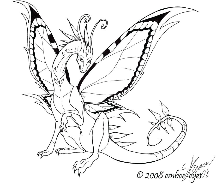 900x763 Butterfly Dragon Line Art