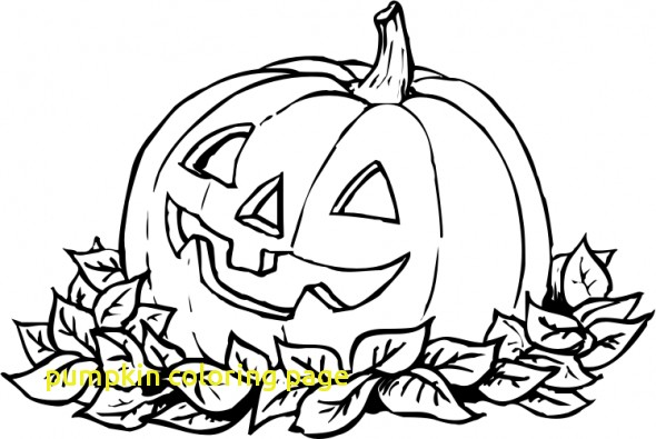 590x395 Linus And Sally In The Pumpkin Patch Coloring Page Woo Jr Kids