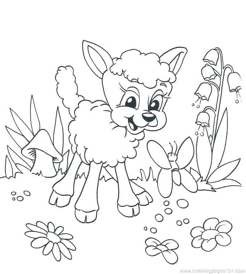 Lion And Lamb Coloring Page at GetDrawings | Free download