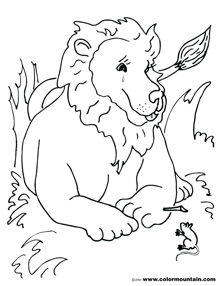 750x956 Lamb Coloring Pages
