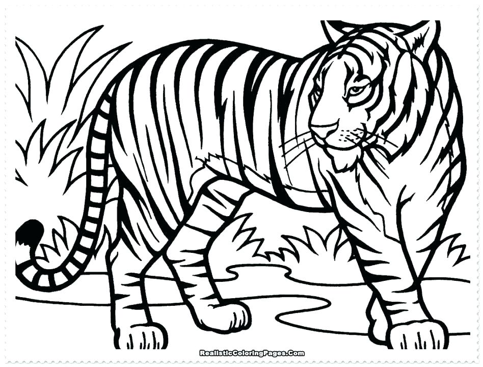 948x720 Coloring Pages Of Tigers Tiger Printable Coloring Pages Tiger