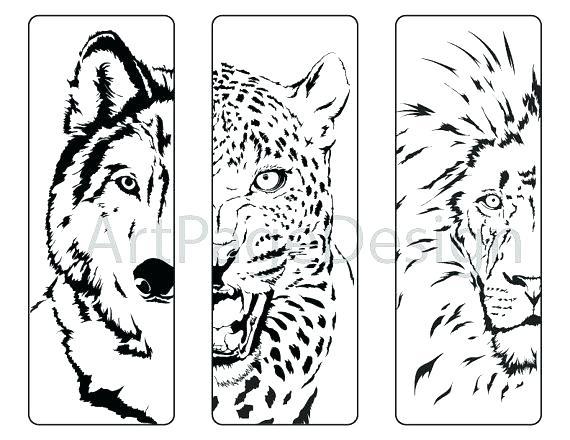 570x440 Coloring Pages Of Lions Lion Coloring Pages Lion Head Coloring