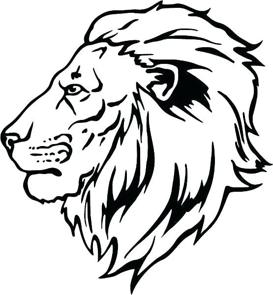 555x600 Coloring Pages Of Lions Lion King Scar Coloring Pages Lion King