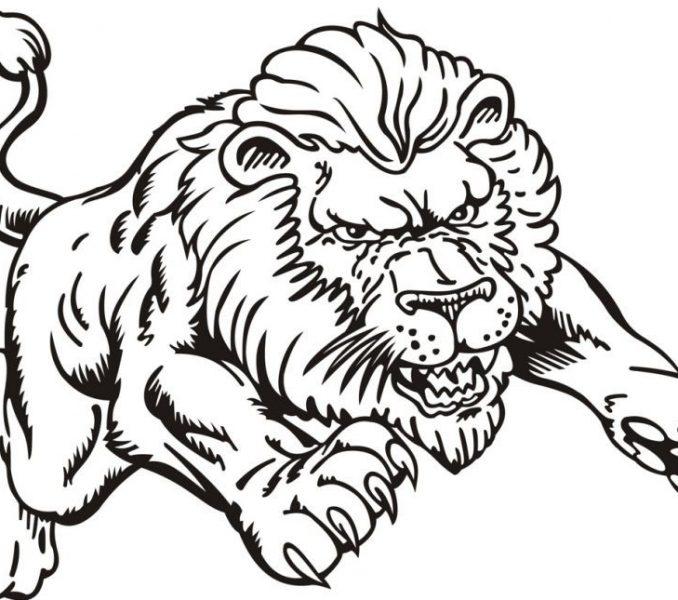 678x600 Lion Coloring Pages Lion Coloring Page Lion Color Page Vitlt