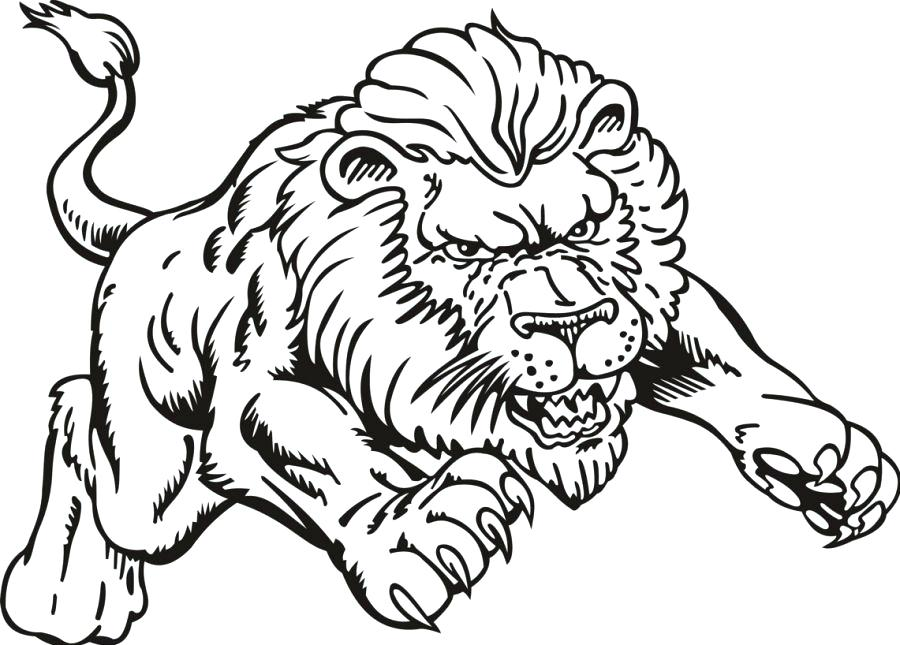 900x645 African Lion Coloring Page Coloring Lion African Lion Colouring